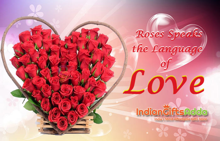 Red Roses for Valentine's Day – It Speaks the Language of Love