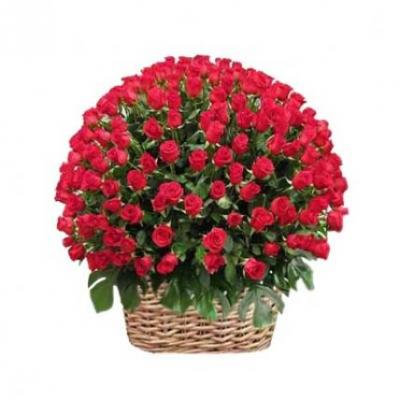 500 Red Roses Basket