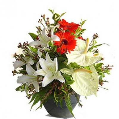 Anthurium, Gerbera & Lily Arrangement
