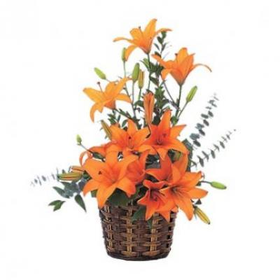 Orange Lily Basket