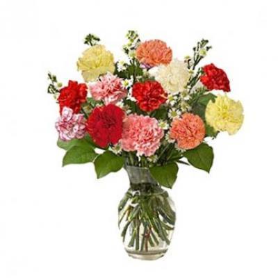 Mix Carnation Vase