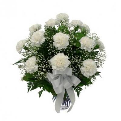 White Carnation Vase