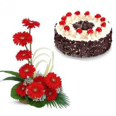 Red Gerbera Basket With Black Forest Cake