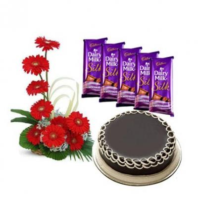 Gerbera, Chocolate With Cake