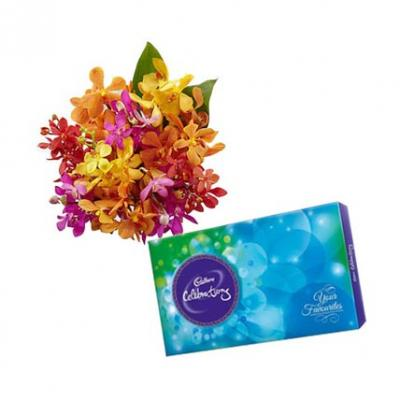 Orchids With Cadbury Celebration