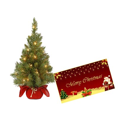 Christmas Tree With Christmas Greeting Card