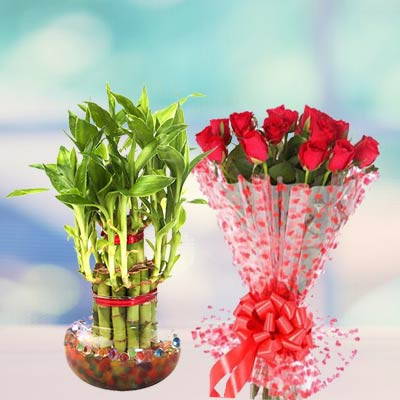 Lucky Bamboo With Roses