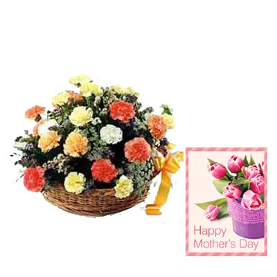 Mixed Carnation Basket with Mothers Day Card