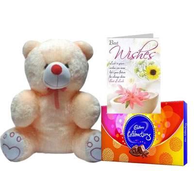 20 Inch Teddy with Celebration & Card