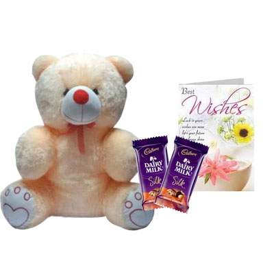20 Inch Teddy with Silk & Card