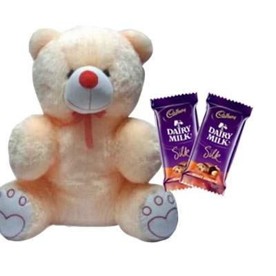 20 Inch Teddy with Silk