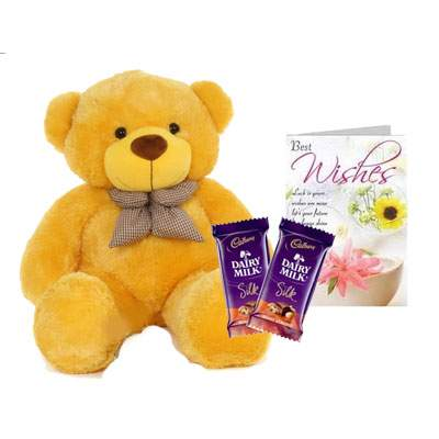 36 Inch Teddy with Silk & Card