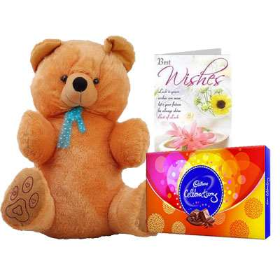 40 Inch Teddy with Celebration & Card