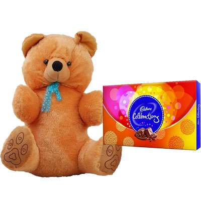 40 Inch Teddy with Celebration