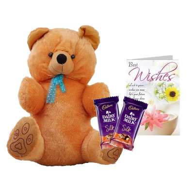 40 Inch Teddy with Silk & Card