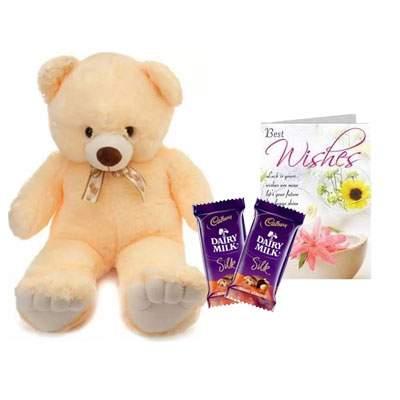 24 Inch Teddy with Silk & Card