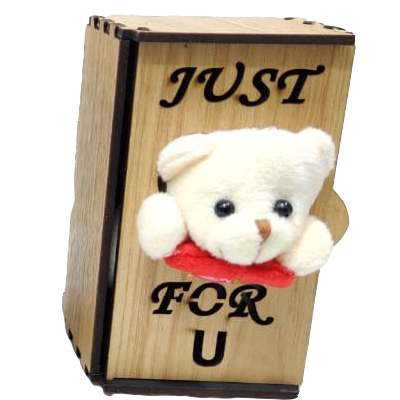 Just for You Teddy in Almirah